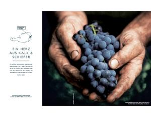 Weinjournal Nr. 72 Ein Herz aus Kalk und Schiefer