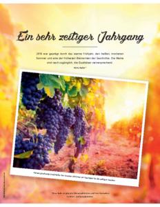 Weinjournal Nr. 73 Ein sehr zeitiger Jahrgang